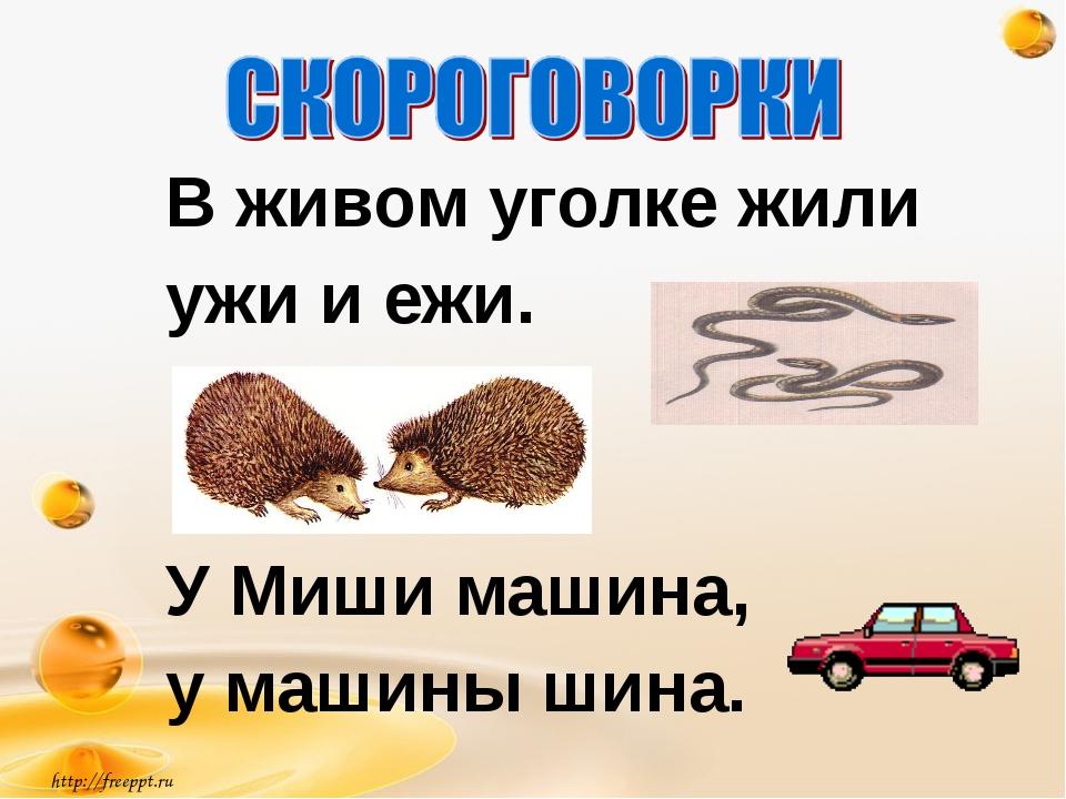 В живом уголке жили ужи и ежи. У Миши машина, у машины шина. http://freeppt.ru