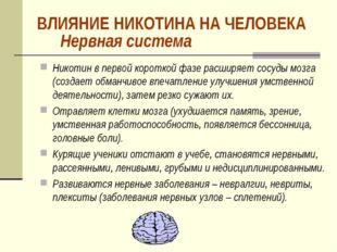 Нервная система Никотин в первой короткой фазе расширяет сосуды мозга (создае