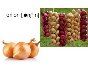 onion[ˈʌnjən]