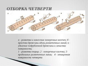 ОТБОРКА ЧЕТВЕРТИ а - разметка и нанесение поперечных насечек; б - просечка д