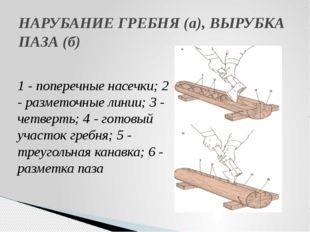 НАРУБАНИЕ ГРЕБНЯ (а), ВЫРУБКА ПАЗА (б) 1 - поперечные насечки; 2 - разметочны