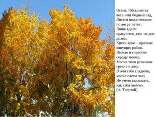 Осень. Обсыпается весь наш бедный сад, Листья пожелтевшие по ветру летят; Л