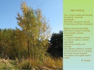 ЛИСТОПАД Лес, точно терем расписной, Лиловый, золотой, багряный, Веселой, пе