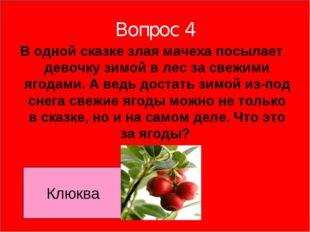 Вопрос 4 В одной сказке злая мачеха посылает девочку зимой в лес за свежими я