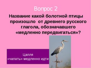 Вопрос 2 Название какой болотной птицы произошло от древнего русского глагола