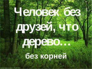 Человек без друзей, что дерево… без корней