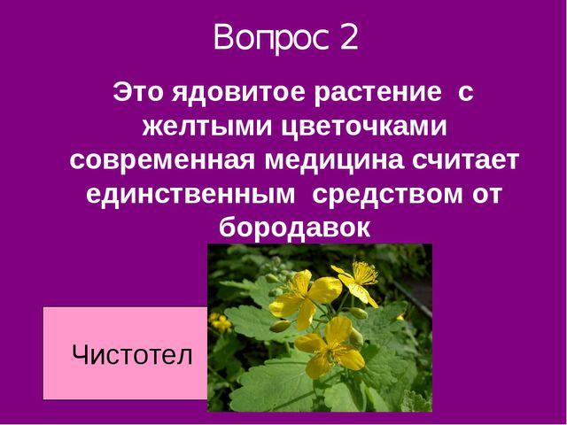 Вопрос 2 Это ядовитое растение с желтыми цветочками современная медицина счит...