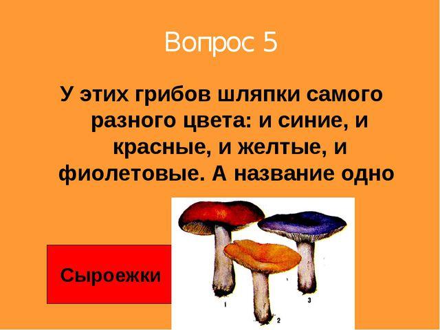 Вопрос 5 У этих грибов шляпки самого разного цвета: и синие, и красные, и жел...