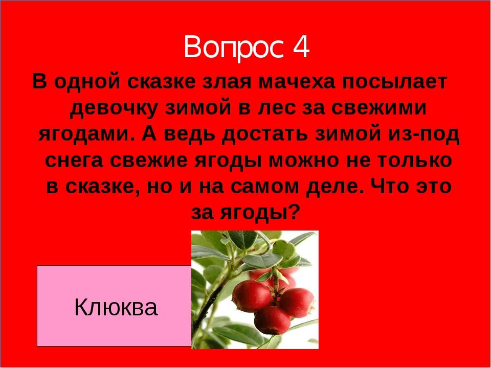Вопрос 4 В одной сказке злая мачеха посылает девочку зимой в лес за свежими я...