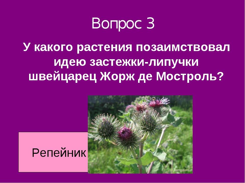 Вопрос 3 У какого растения позаимствовал идею застежки-липучки швейцарец Жорж...
