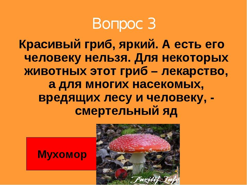Вопрос 3 Красивый гриб, яркий. А есть его человеку нельзя. Для некоторых живо...