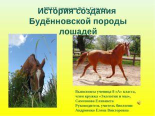 История создания Будённовской породы лошадей Выполнила ученица 8 «А» класса,