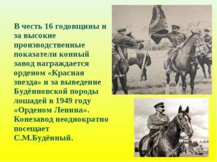 В честь 16 годовщины и за высокие производственные показатели конный завод н