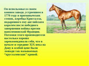 Он использовал в своем конном заводе, устроенном в 1770 году в приманычских