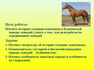 Цель работы: Изучить историю создания конезавода и буденовской породы лошадей