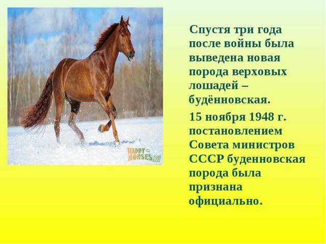 Спустя три года после войны была выведена новая порода верховых лошадей – бу...