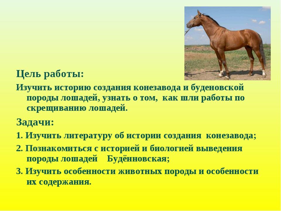 Цель работы: Изучить историю создания конезавода и буденовской породы лошадей...