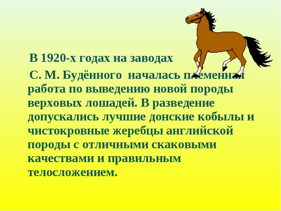 В 1920-х годах на заводах С. М. Будённого началась племенная работа по вывед...