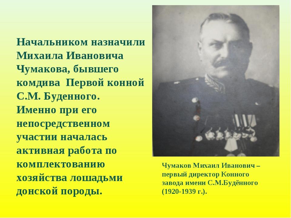 Чумаков Михаил Иванович – первый директор Конного завода имени С.М.Будённого...