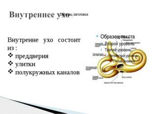 Внутренне ухо состоит из : преддверия улитки полукружных каналов