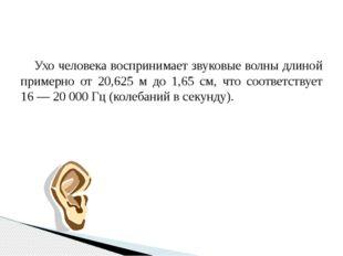 Ухо человека воспринимает звуковые волны длиной примерно от 20,625 м до 1,65