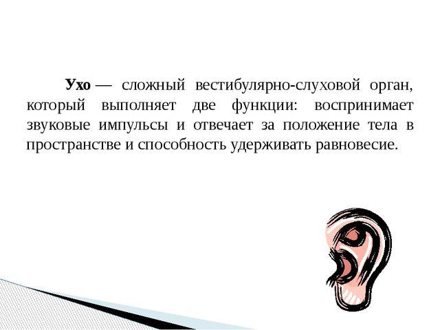 Ухо— сложный вестибулярно-слуховой орган, который выполняет две функции: во...