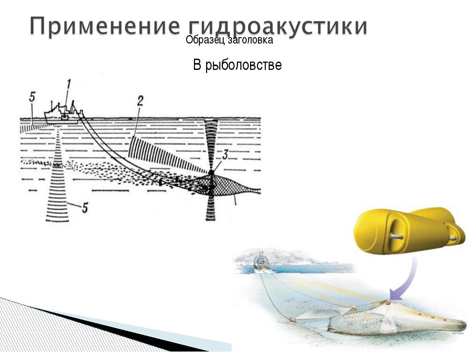 В рыболовстве