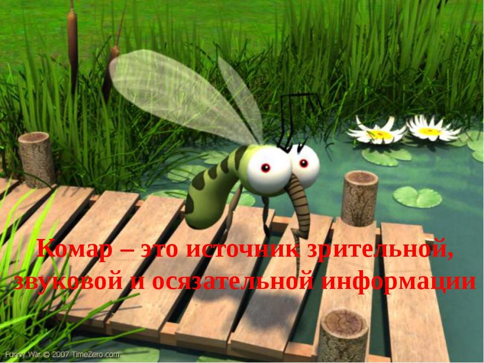 Комар – это источник зрительной, звуковой и осязательной информации