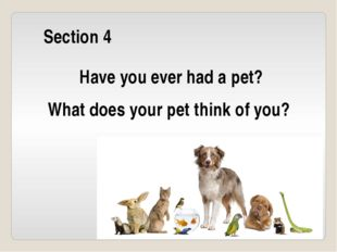 Section 4 Have you ever had a pet? What does your pet think of you?