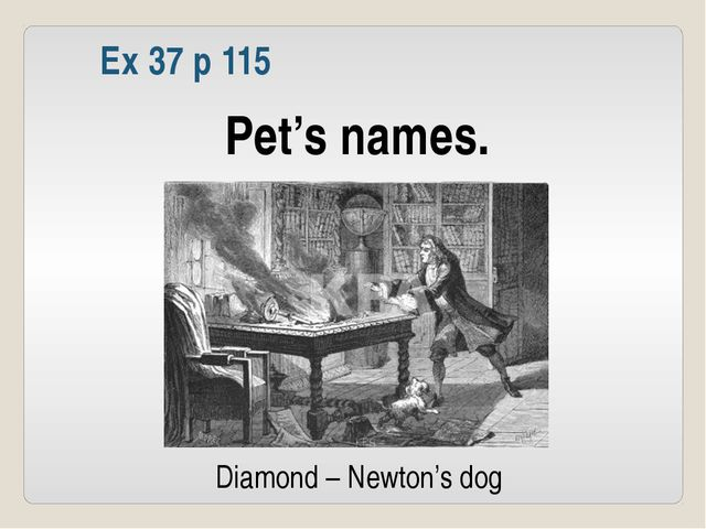 Ex 37 p 115 Pet's names. Diamond – Newton's dog