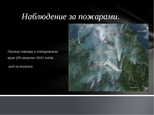 Наблюдение за пожарами. Лесные пожары в Хабаровском крае (29 августа 2012 год...