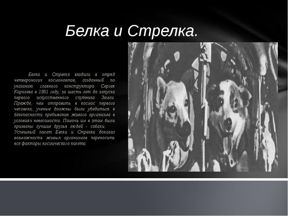 Белка и Стрелка. Белка и Стрелка входили в отряд четвероногих космонавтов, со...