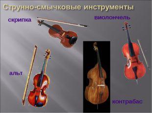 контрабас альт виолончель скрипка