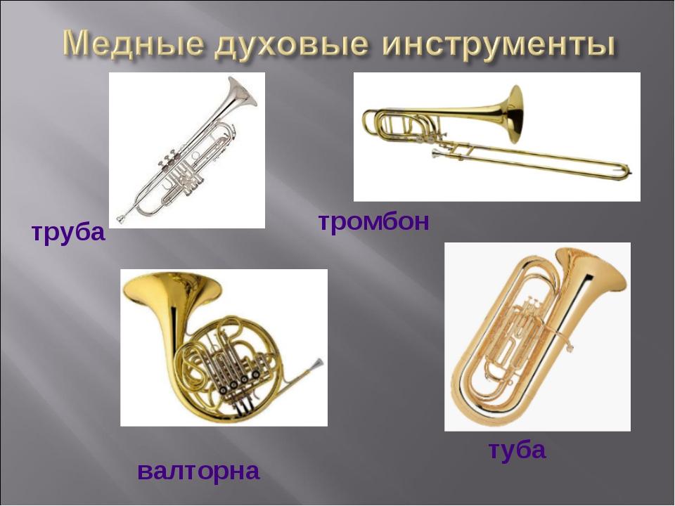 труба тромбон валторна туба