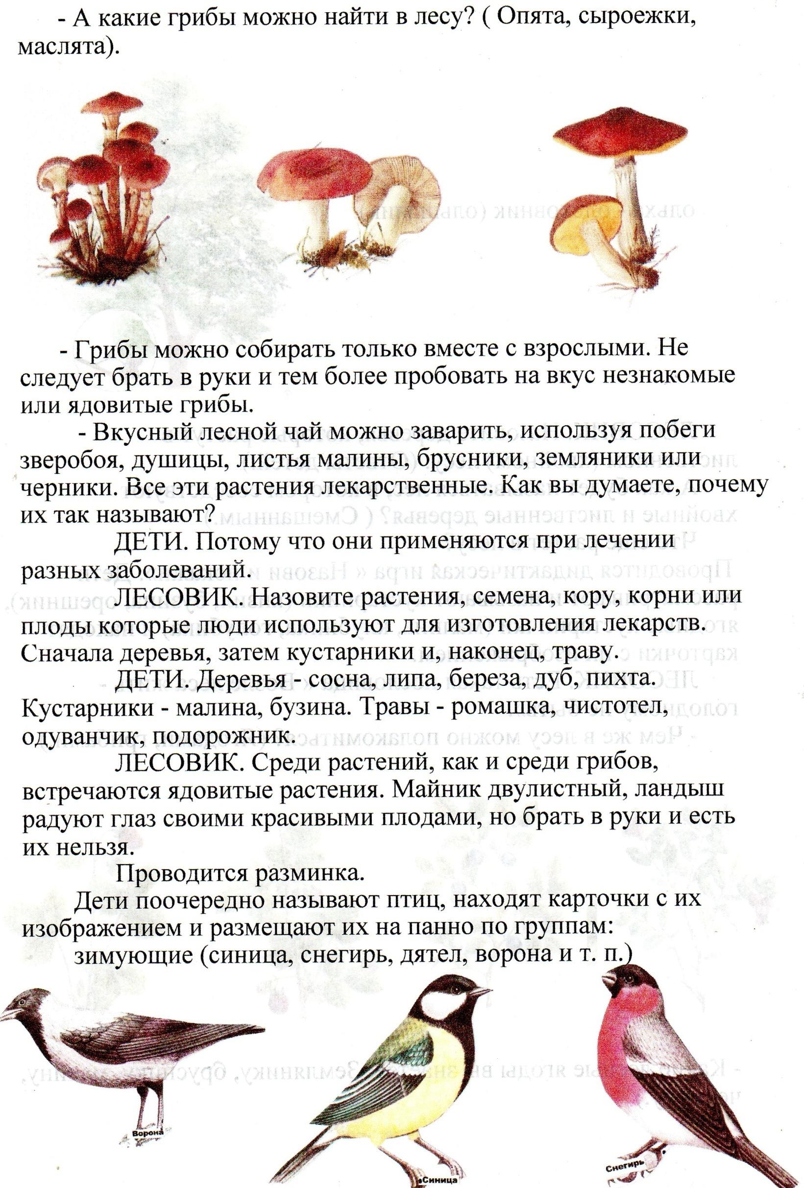 C:\Users\Александр\Pictures\img030.jpg