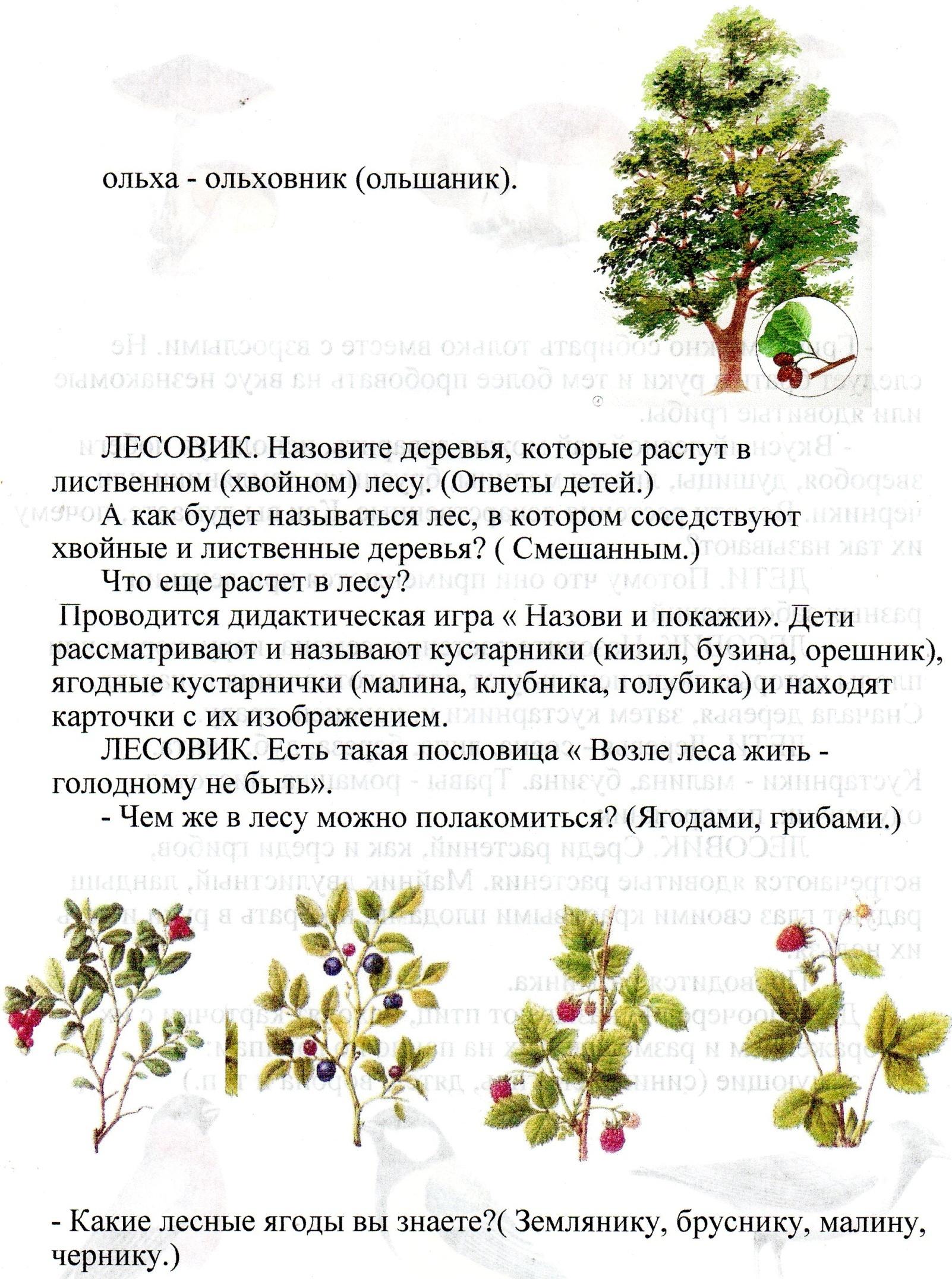 C:\Users\Александр\Pictures\img029.jpg
