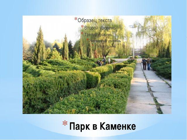 Парк в Каменке
