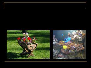 В реальной жизни каждый объект существует в собственной среде: рыбы - в реке,