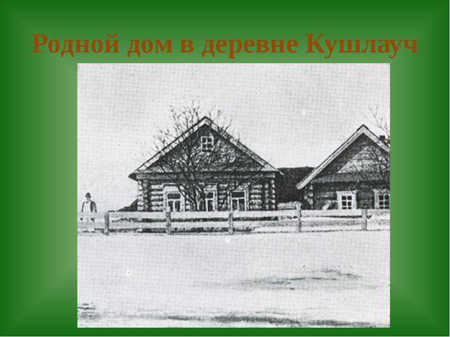 Родной дом в деревне Кушлауч