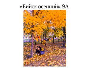 «Бийск осенний» 9А