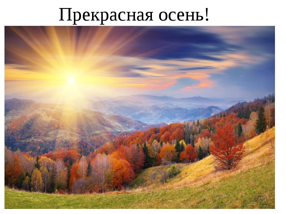 Прекрасная осень!