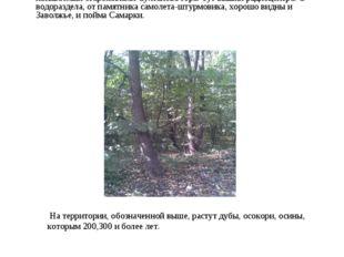 Природа Барбошиной Поляны. Границы Барбошиной Поляны в разные годы считали