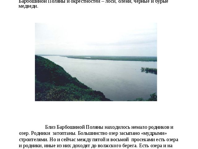 Ещё в конце XIX века самарские охотники промышляли дичь на просеках и на Ба...
