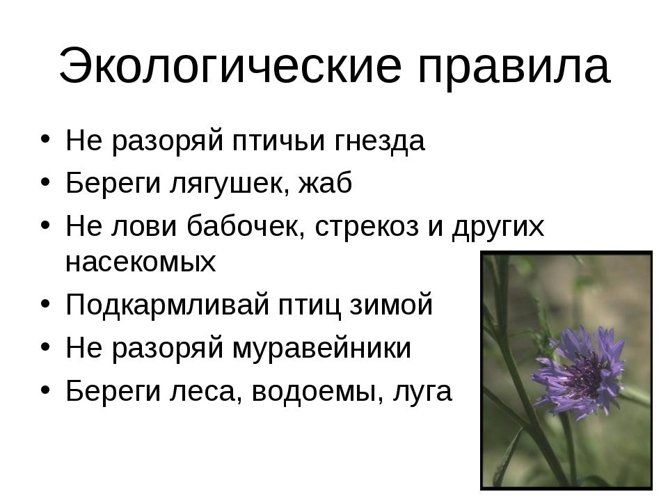 Экологические правила Не разоряй птичьи гнезда Береги лягушек, жаб Не лови ба...