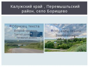 Калужский край , Перемышльский район, село Борищево