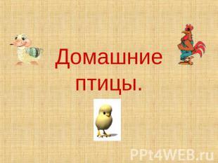 hello_html_48a8360b.jpg