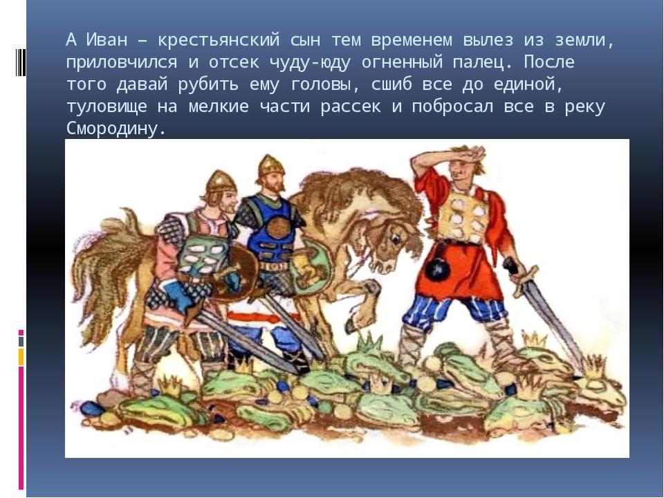 А Иван – крестьянский сын тем временем вылез из земли, приловчился и отсек чу...