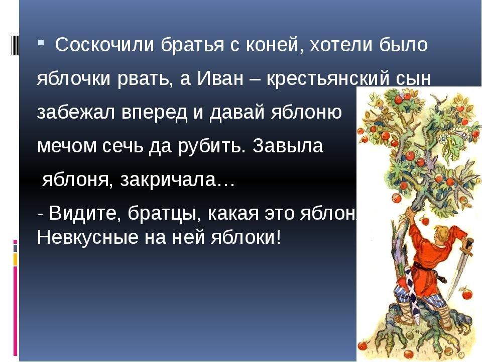 Соскочили братья с коней, хотели было яблочки рвать, а Иван – крестьянский с...