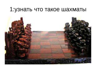 1:узнать что такое шахматы