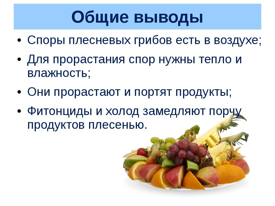 Общие выводы Споры плесневых грибов есть в воздухе; Для прорастания спор нужн...